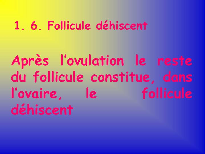 1. 6. Follicule déhiscent
