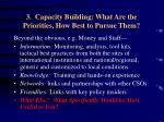 3 capacity building what are the priorities how best to pursue them