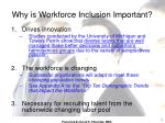 why is workforce inclusion important