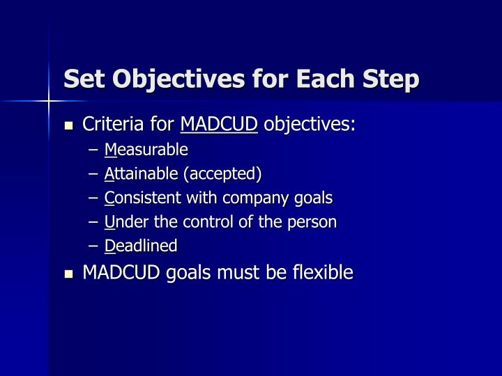 Set Objectives for Each Step