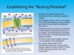 establishing the resting potential