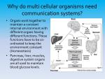 why do multi cellular organisms need communication systems2