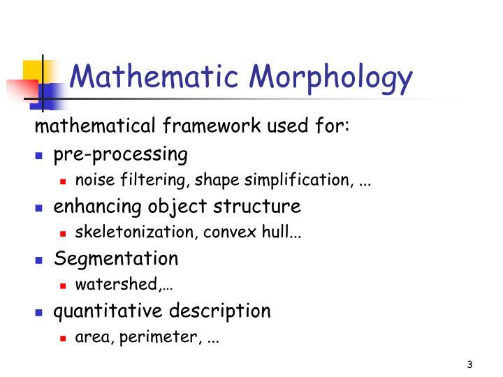 Mathematic Morphology