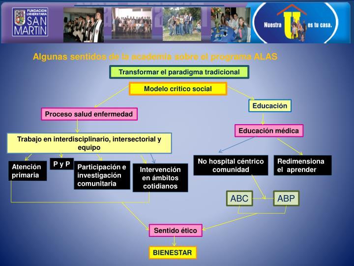 Algunas sentidos de la academia sobre el programa ALAS