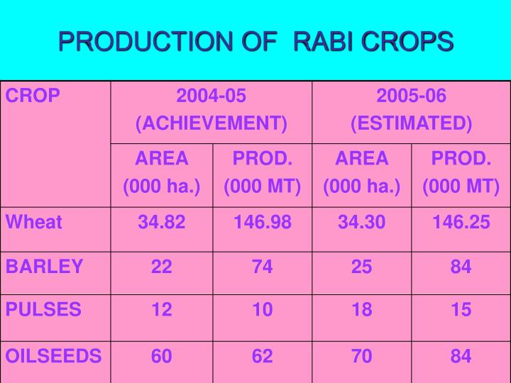 PRODUCTION OF  RABI CROPS
