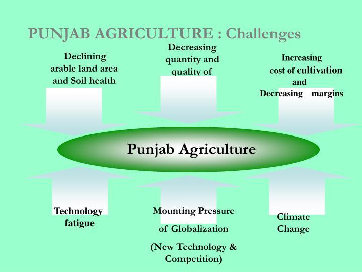 PUNJAB AGRICULTURE : Challenges