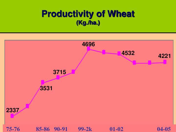 Productivity of Wheat