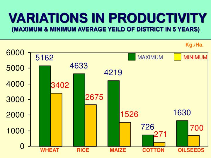 VARIATIONS IN PRODUCTIVITY