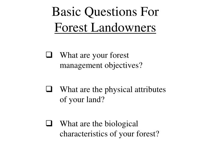 Basic Questions For