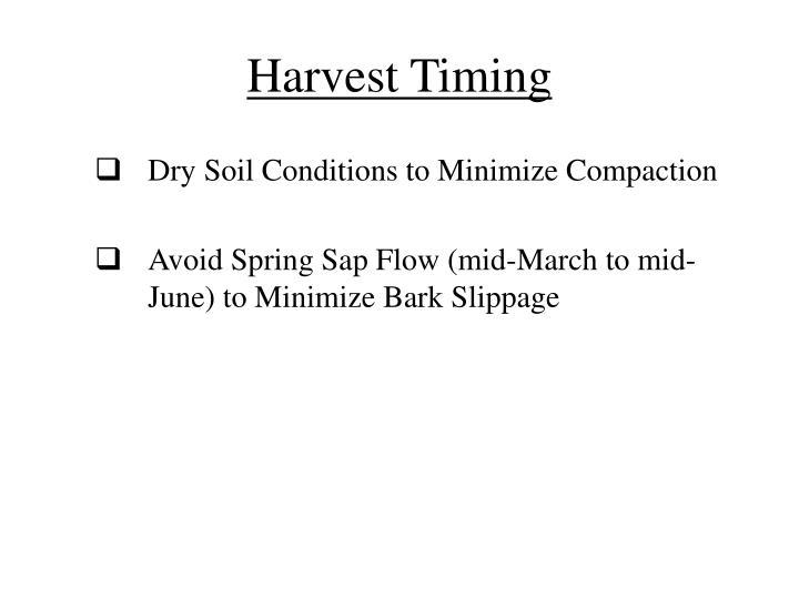 Harvest Timing
