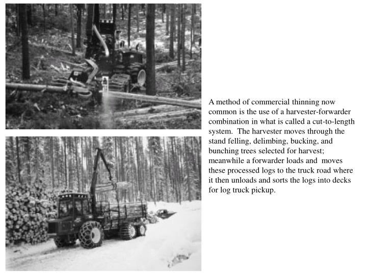 A method of commercial thinning now