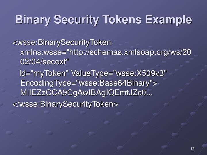 Binary Security Tokens Example