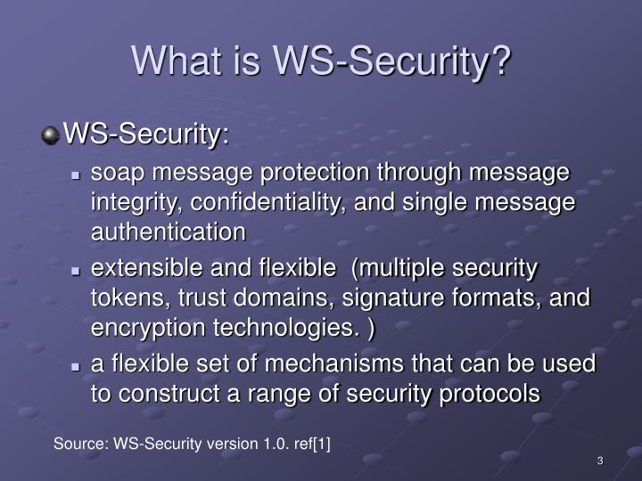 What is ws security