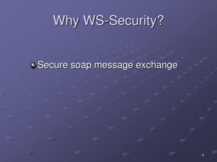 Why WS-Security?