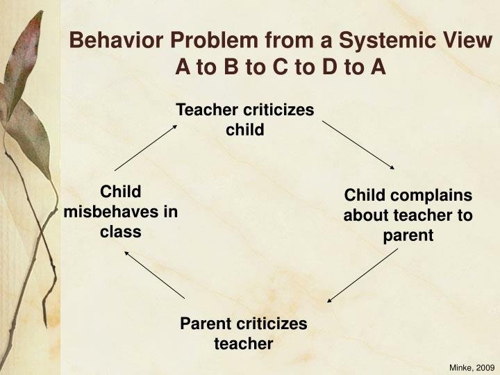 Behavior Problem from a Systemic View