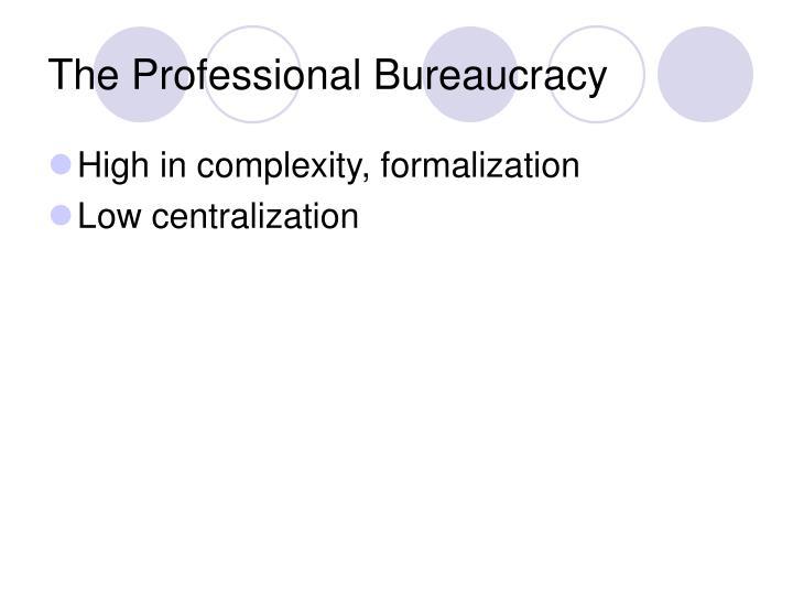 The Professional Bureaucracy