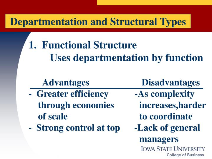 Departmentation and Structural Types