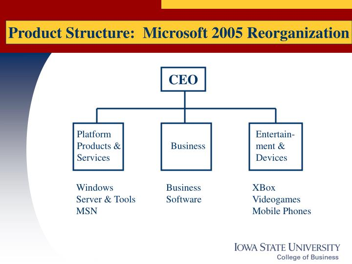 Product Structure:  Microsoft 2005 Reorganization