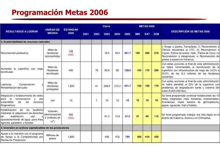 Programación Metas 2006