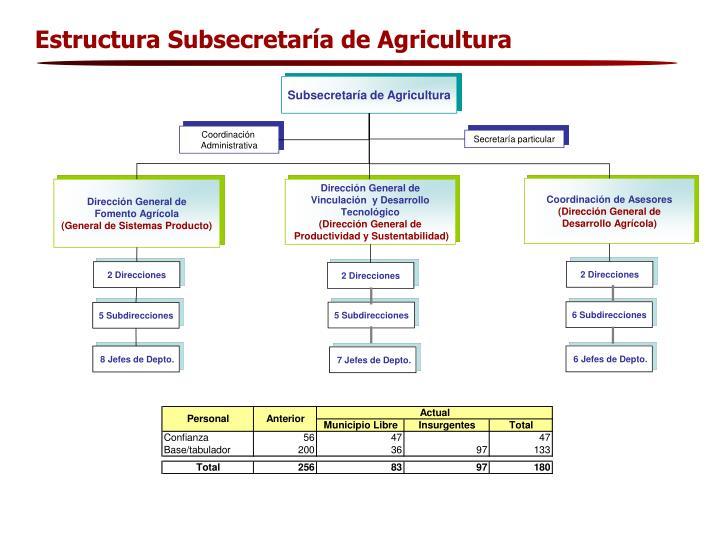 Estructura Subsecretaría de Agricultura