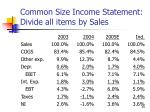 common size income statement divide all items by sales
