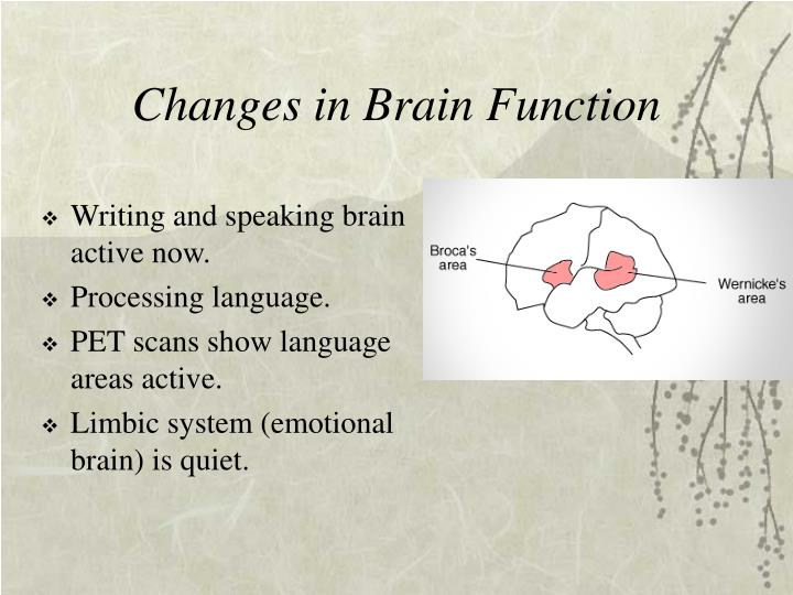 Changes in Brain Function