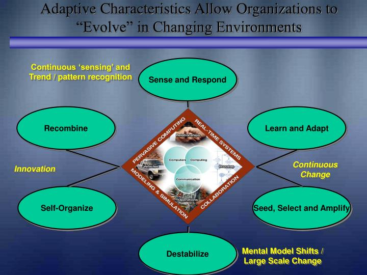 """Adaptive Characteristics Allow Organizations to """"Evolve"""" in Changing Environments"""