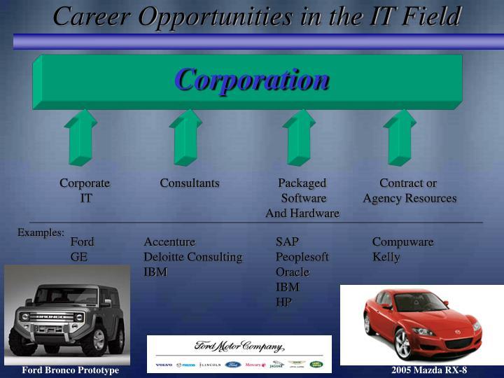 Career Opportunities in the IT Field