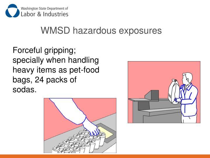WMSD hazardous exposures