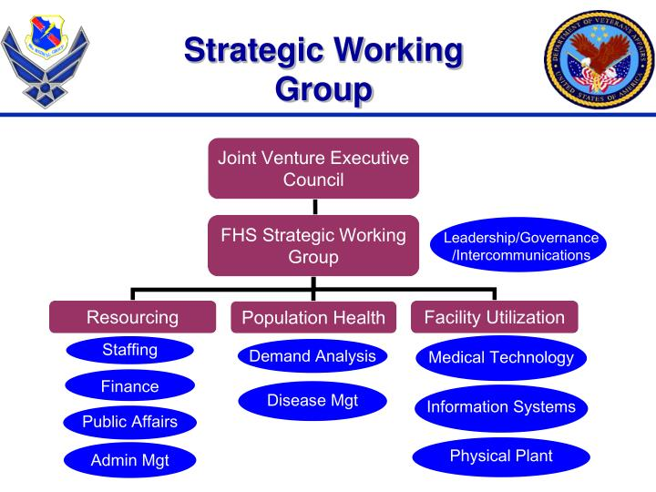 Strategic Working Group