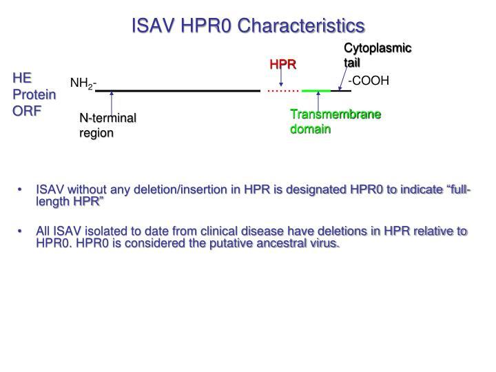 ISAV HPR0 Characteristics