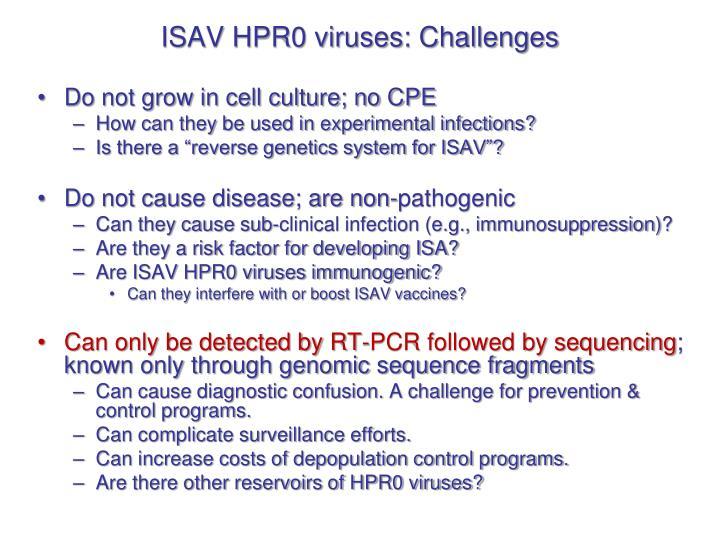 ISAV HPR0 viruses: Challenges