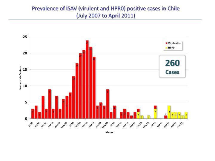 Prevalence of ISAV (