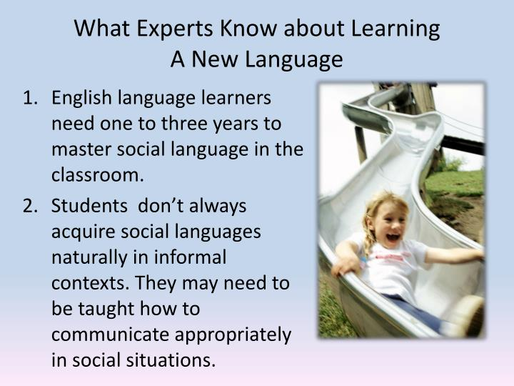 What Experts Know about Learning