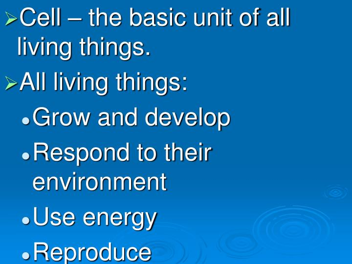 Cell – the basic unit of all living things.