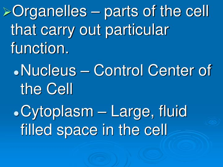 Organelles – parts of the cell that carry out particular function.
