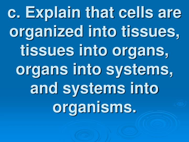 c. Explain that cells are organized into tissues, tissues into organs, organs into systems, and systems into organisms.