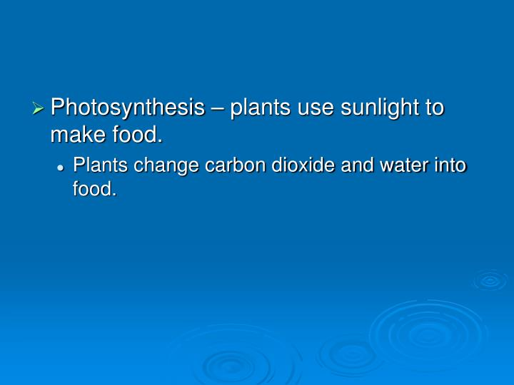 Photosynthesis – plants use sunlight to make food.