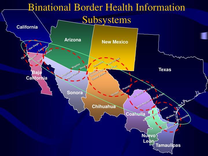 Binational Border Health Information Subsystems