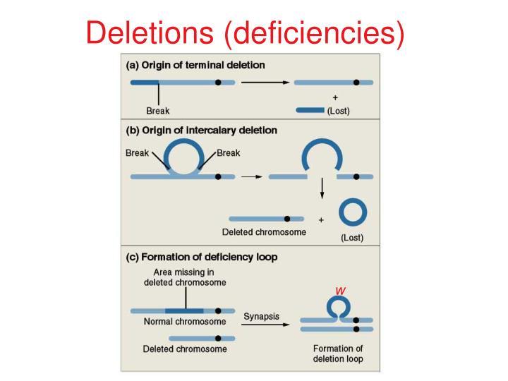 Deletions (deficiencies)