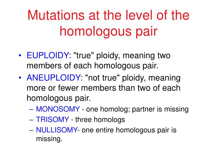 Mutations at the level of the homologous pair