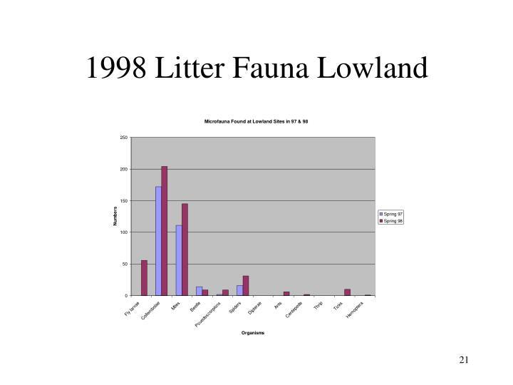 1998 Litter Fauna Lowland
