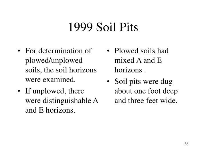 1999 Soil Pits