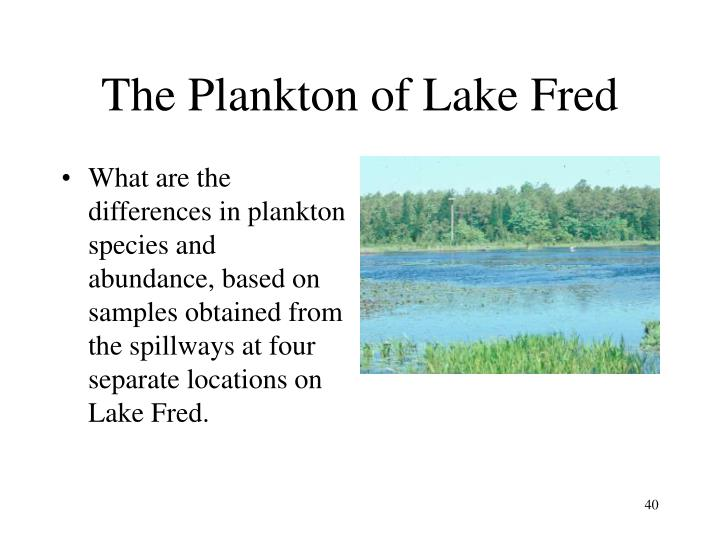 The Plankton of Lake Fred