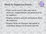 merit by employee panels