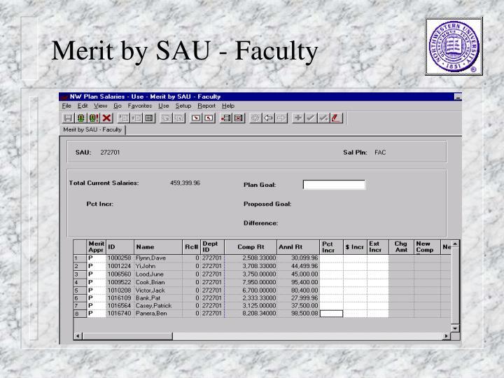 Merit by SAU - Faculty