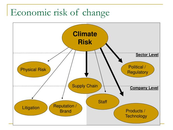 Economic risk of change