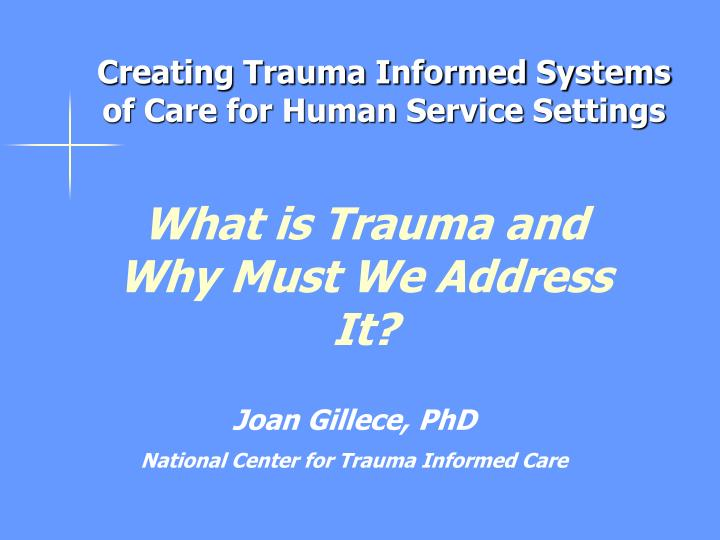 Creating Trauma Informed Systems of Care for Human Service Settings