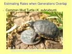 estimating rates when generations overlap