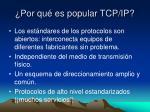 por qu es popular tcp ip